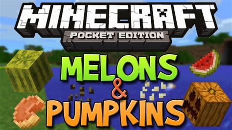 searching for tough seed to combat the harsh how to get pumpkins melons in minecraft pocket edition
