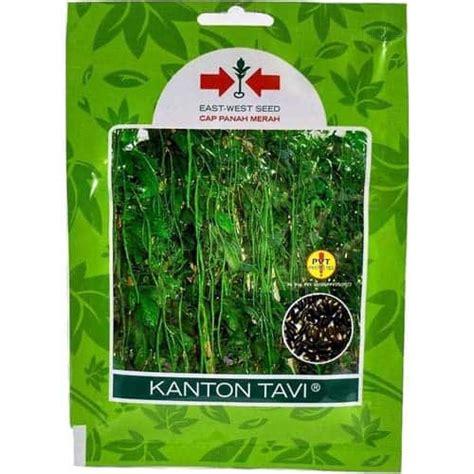 Benih Kacang Panjang Global Seed jual benih kacang panjang kanton tavi 200 biji panah