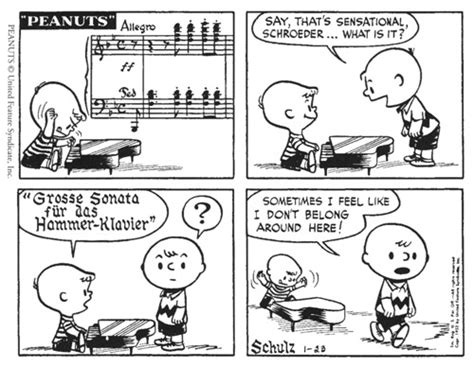 ken wachsberger s puns and word plays for the seeker books beethoven and peanuts bibliolore