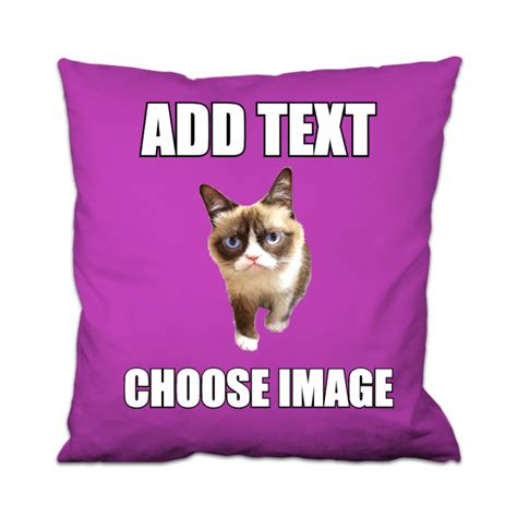 Make Your Own Cat Meme - create your own grumpy cat meme