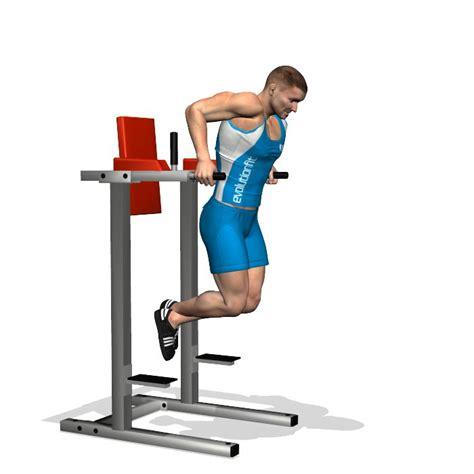 la chaise musculation 1000 id 233 es sur le th 232 me exercice musculation pectoraux sur