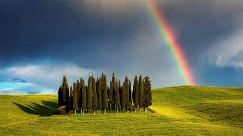 Wallpapers Interior Design by Rainbow Cypress Hill Tuscany Italy Hd Wallpaper