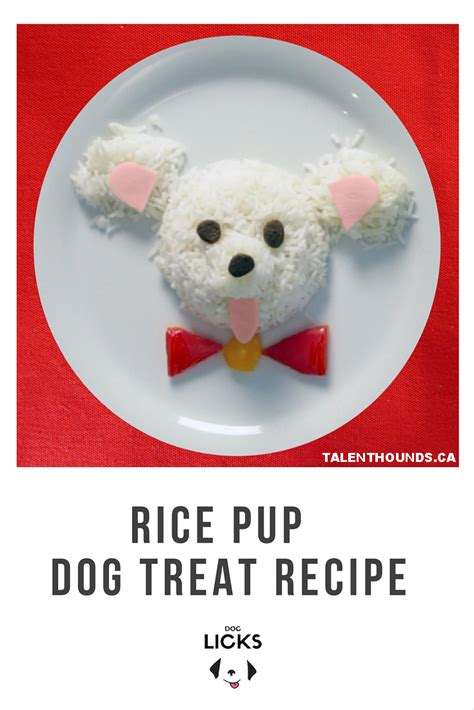 rice for dogs how to make easy friendly rice pups talent hounds