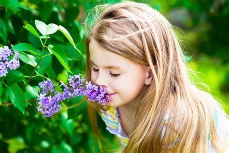 memories  smells require   coordination   brain