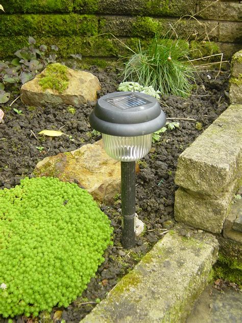 Solar Landscaping Lights Solar Powered Light Line Philadelphia Landscaping Landscaping Design On The Line
