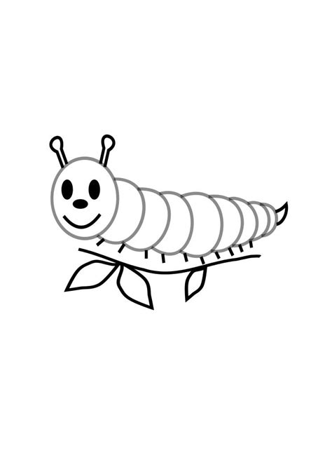 a caterpillar coloring pages