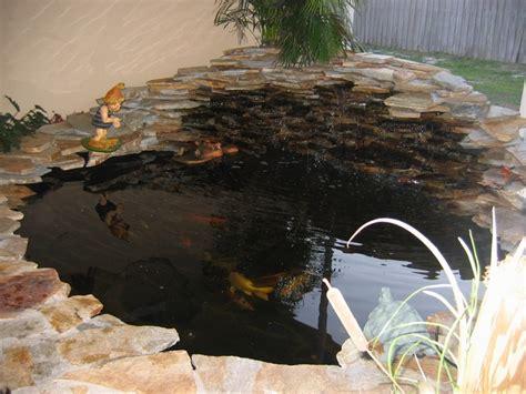 backyard coy ponds coy fish pond pools spa fish ponds pinterest