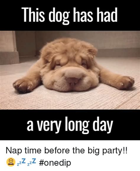 Long Day Memes - 25 best memes about long day long day memes