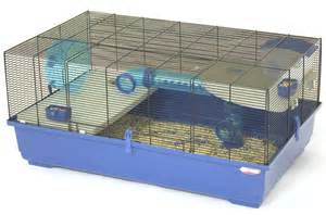 Cages For Hamsters Huge Hamster Cage Images Amp Pictures Becuo