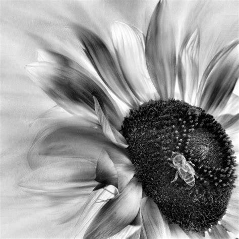 Gantungan Matahari 3 Susun Putih 1 hitam putih newhairstylesformen2014