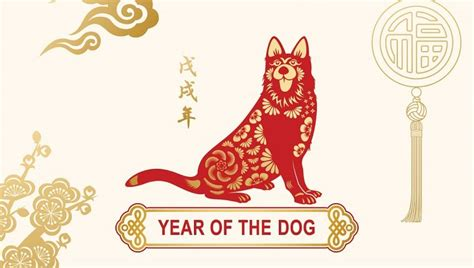 new year 2018 year of the horoscope zodiac 2018 the year of the and what it means