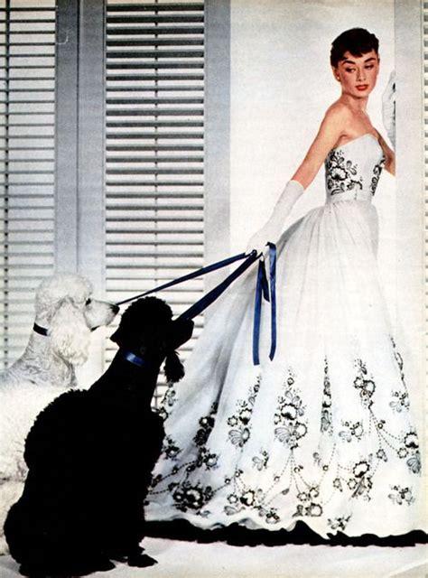 C L Dress Sabrina Ayumi Black the world s catalog of ideas