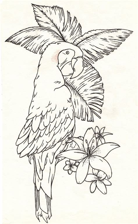 macaw tattoo designs parrot design stencil by dfalkcreative on deviantart