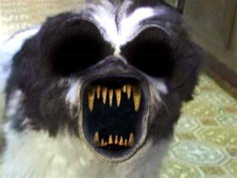 psycho dog from hell   doovi