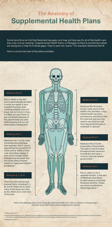 supplemental health insurance the anatomy of a supplemental health plan johnson