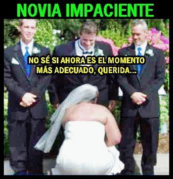 imagenes memes sobre bodas novias y bodas en fotos memes sobaco global