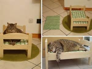 le lit du chat du mobilier pour chat original photos