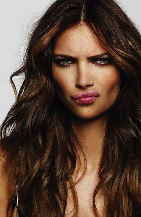 chocolate colored hair 92 best hair colors images on hair colors