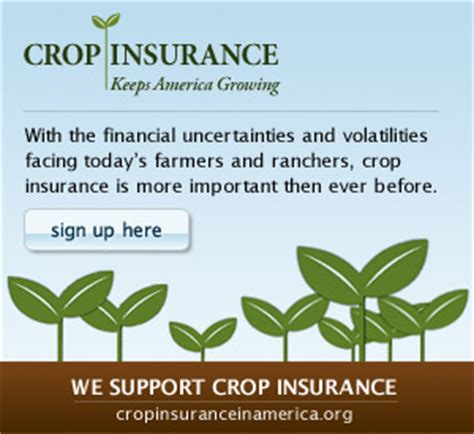 crop insurance important for ag industry washington ag the basics of crop insurance the farmer s usa