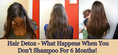 What Happens To Your When You Detox From by Hair Detox What Happens When You Don T Shoo For 6 Months