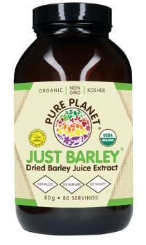 Detox Juice Powder Springs by Just Barley Juice Organic Powder 80 Grams