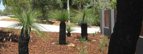 front yard landscaping ideas perth front yard landscaping ideas perth pdf