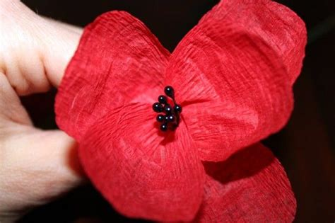 How To Make Paper Poppy Flowers - diy paper poppies dr oz to find out and flower