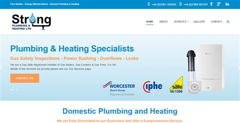 Strong Plumbing Co by Its Web Design Website Hosting Email Services