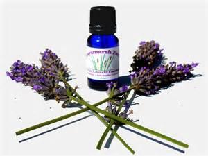 lavender essential oil benefits for skin letmeget com