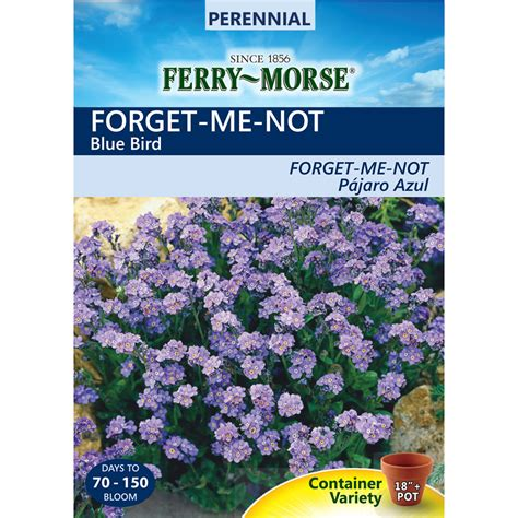 free gardening seeds latestfreestuff co uk