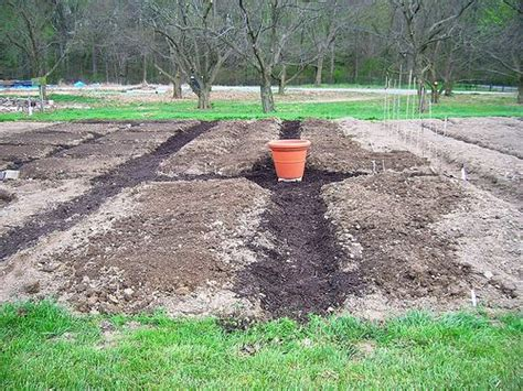Planning A Vegetable Garden From Scratch Gardening From Scratch Interesting Things To Think About