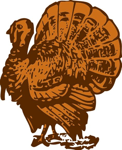 Clip Ori Turkey 1 the point november 2014