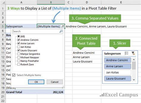 pivot table and pivot chart 3 ways to display multiple items filter criteria in a