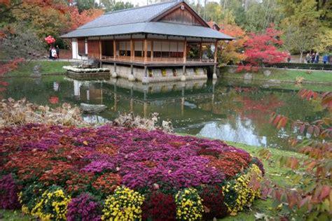 japanischer garten hasselt japanese garden hasselt picture of japanese garden