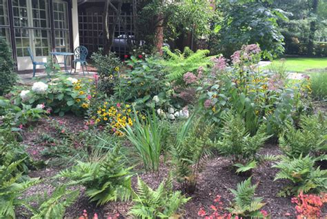 local guides  green  healthy landscaping