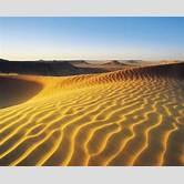 desert-biome-map