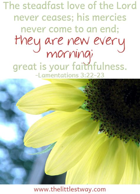 miracles in the mess affirming god s daily books the importance of daily affirmations the littlest way
