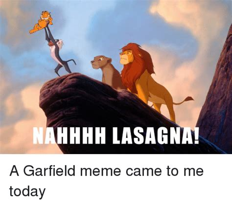 Lasagna Meme - funny garfield memes of 2016 on sizzle life