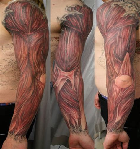 what do you put on a new tattoo wackiest anatomical tattoos
