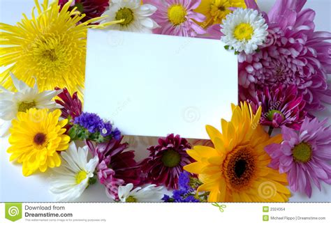 Michael S Flowers Cards Gift - blank note card with flowers stock photo image 2324354