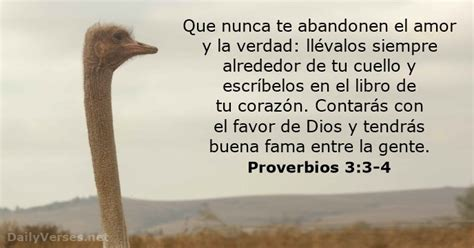 libro algo alrededor de tu proverbios 3 3 4 vers 237 culo de la biblia del d 237 a
