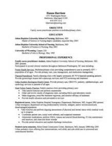 Early Years Practitioner Sle Resume by Practitioner Resume Exle Nursing Programs Student And Volunteers