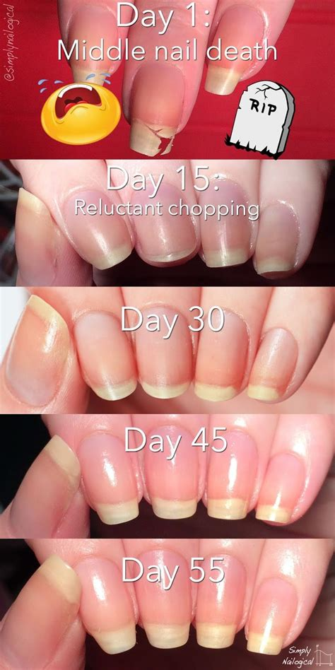 how to make nail beds longer 1000 ideas about grow nails on pinterest grow nails