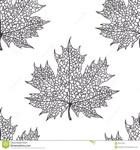 black and white leaf pattern maple leaf pattern stock photo image 36137500