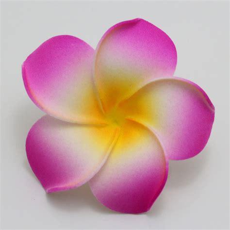 Discount Home Decorations by 50pcs Big 6cm Plumeria Hawaiian Foam Frangipani Flower