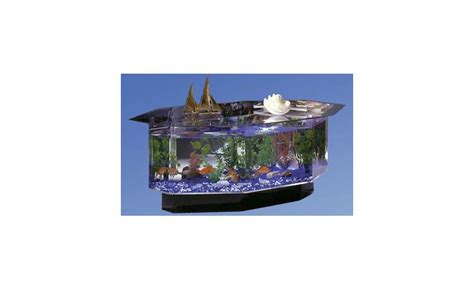 midwest tropical 25 gallon aqua coffee table aquarium tank midwest tropical 25 gallon aqua coffee table
