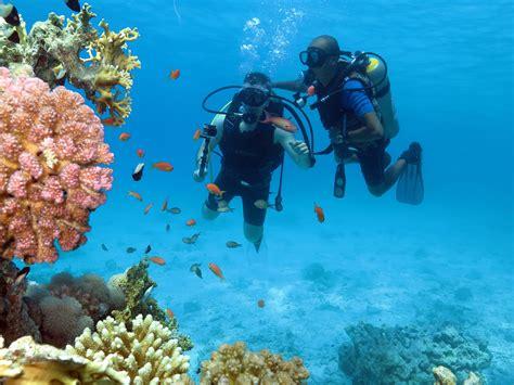 dive in sharm diving sharm el sheikh tiran island sea