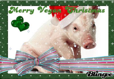 merry vegan christmas picture  blingeecom