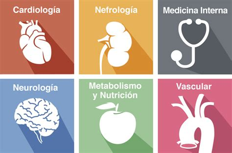 medicina interna 191 qu 233 especialidad m 233 dica elegir si estas estudiando