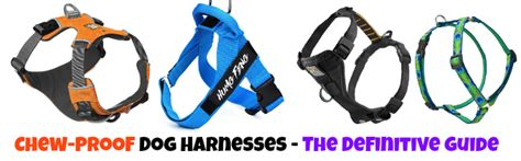 chew proof harness what is the best strong heavy duty chew proof harness